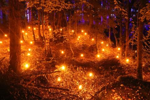 Firelights